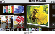 fig_snap_viewer01_20090202